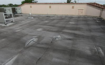 Common Roof Issues: Blisters